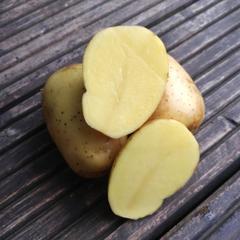 Картофель молодой (Краснодар) / 1 кг