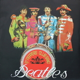 The Beatles / Sgt. Pepper's Lonely Hearts Club Band - The Rock Band Remixes 2009 (LP)