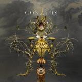 Joep Beving / Conatus (CD)