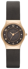 Наручные часы Skagen SKW2208