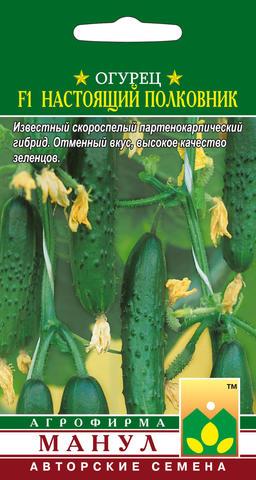 Семена Огурец Настоящий полковник