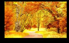 """Постер """"Осенний пейзаж"""""""