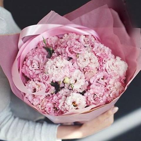 Эустома махровая розовая от 9шт