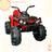 Квадроцикл Grizzly BDM0906
