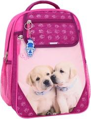 Рюкзак школьный Bagland Отличник 20 л. 143 малина 118 д (0058070)