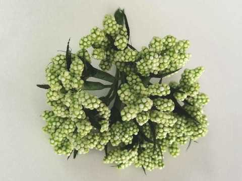 Букетики тычинок, цвет Зелёный