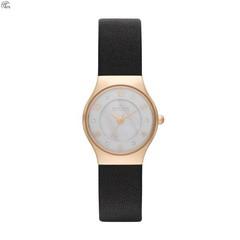 Наручные часы Skagen SKW2209