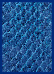 Legion Supplies - Dragon Hide Blue Протекторы 50 штук