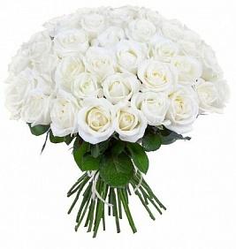 Цветы 51 белая роза 51_белая_роза.jpg