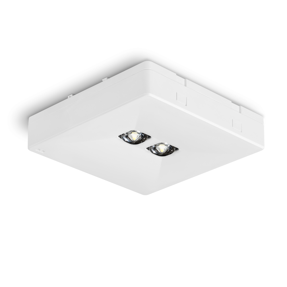 Светильники аварийного освещения безопасности ONTEC R S2 – общий вид