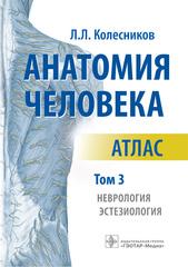 Анатомия человека. Атлас в 3-х томах. Том 3. Неврология, эстезиология