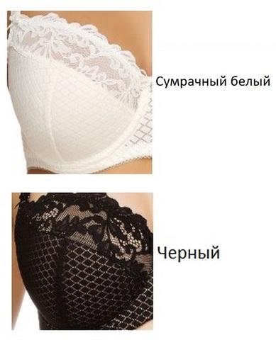 L91G41-БЮСТГАЛЬТЕР