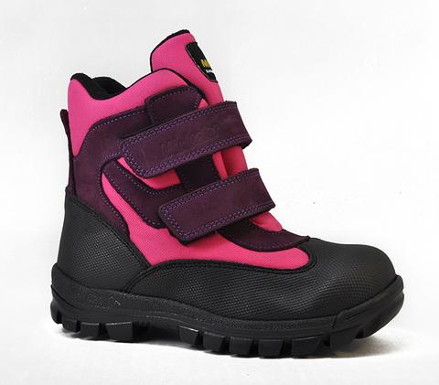 Ботинки утепленные Minicolor 2540-19-2432