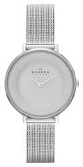 Наручные часы Skagen SKW2211