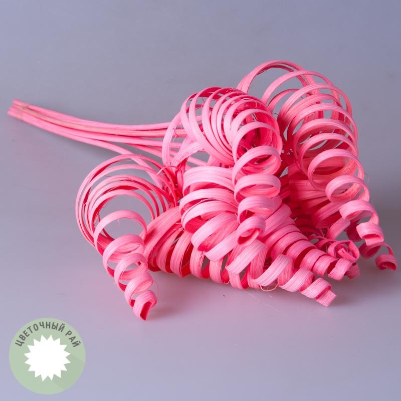 Сухоцветы.Конус прямой розовый 10 шт.