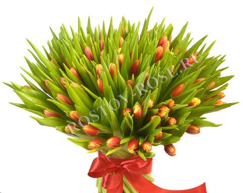 101 Красно-желтый тюльпан