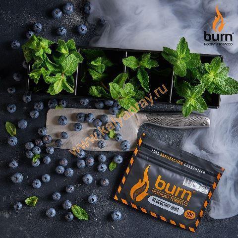 Burn Blueberry Mint