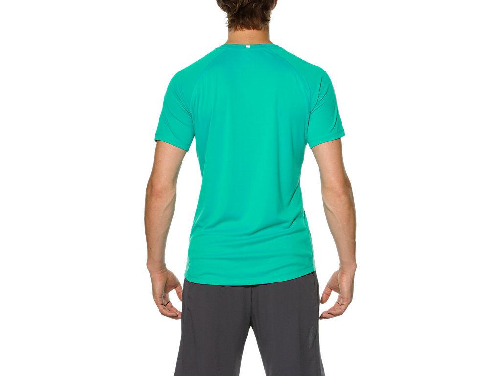 Мужская футболка для бега Asics Stripe SS (126236 4005) фото