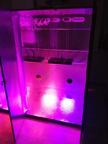 Гроубокс Growbox 165х150х95