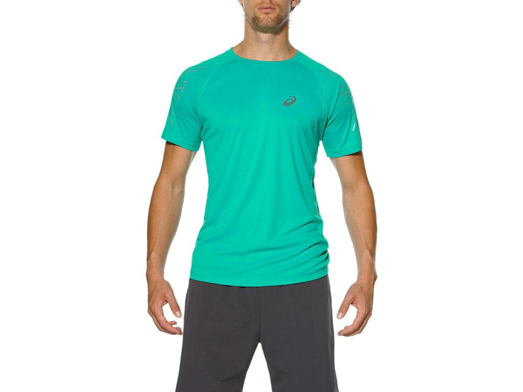 Мужская спортивная беговая футболка Asics Stripe SS Top (126236 4005) - фото, описание, цена