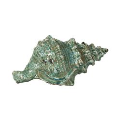 Ракушка декоративная 11 см Evergreen
