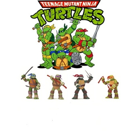 TMNT Basic Turtle Figure Series 01 set