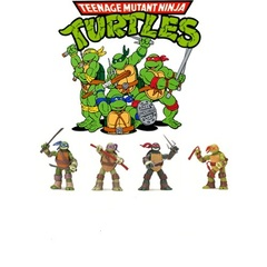 TMNT Basic Turtle Figure Series 01 set