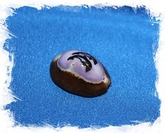Морская ракушка с отверстием для рукоделия Ципрея