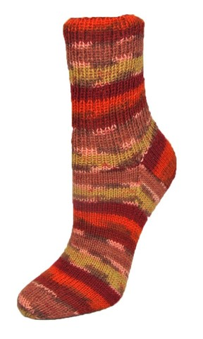 Rellana Flotte Socke Magic 1301 купить