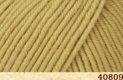 Купить Пряжа FibraNatura Sensational Код цвета 40809 | Интернет-магазин пряжи «Пряха»