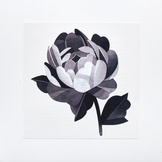 Переводная татуировка Grey Peony Flower