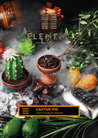 Element Cactus Fig (Кактусовый Финик) земля 200г