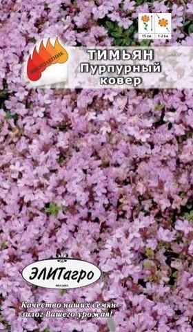 Семена Тимьян Пурпурный ковер, Мнг