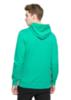 Мужская толстовка с капюшоном Asics Graphic Hoodie 131532 4005