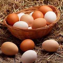 Яйцо куриное на органическом корме, 1 дес