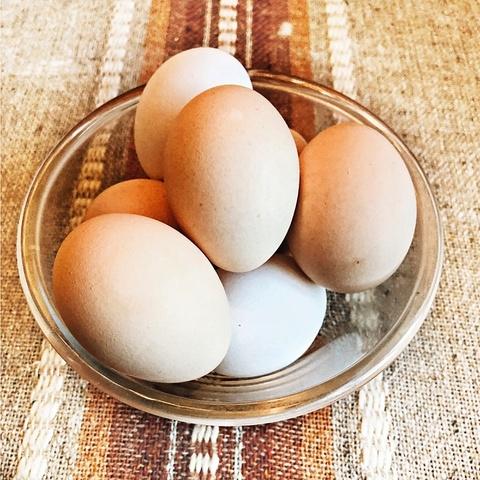 Фотография Яйца домашние 1 десяток купить в магазине Афлора