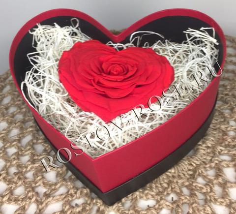Розы стабилизированные - композиция Ты прекрасна