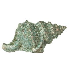 Ракушка декоративная 14 см Evergreen
