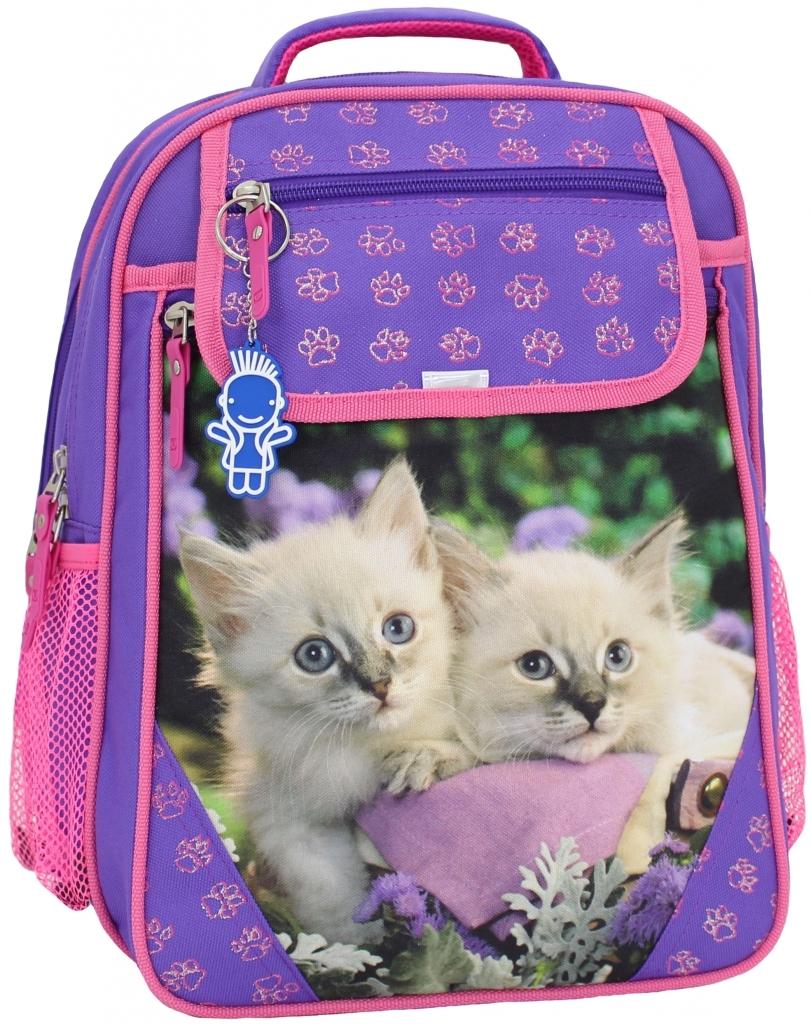 Школьные рюкзаки Рюкзак школьный Bagland Отличник 20 л. 170 фіолетовий 5 д (0058066) 2c601ad9d2ff9bc8b282670cdd54f69f.JPG