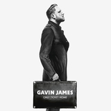 Gavin James / Only Ticket Home (LP)