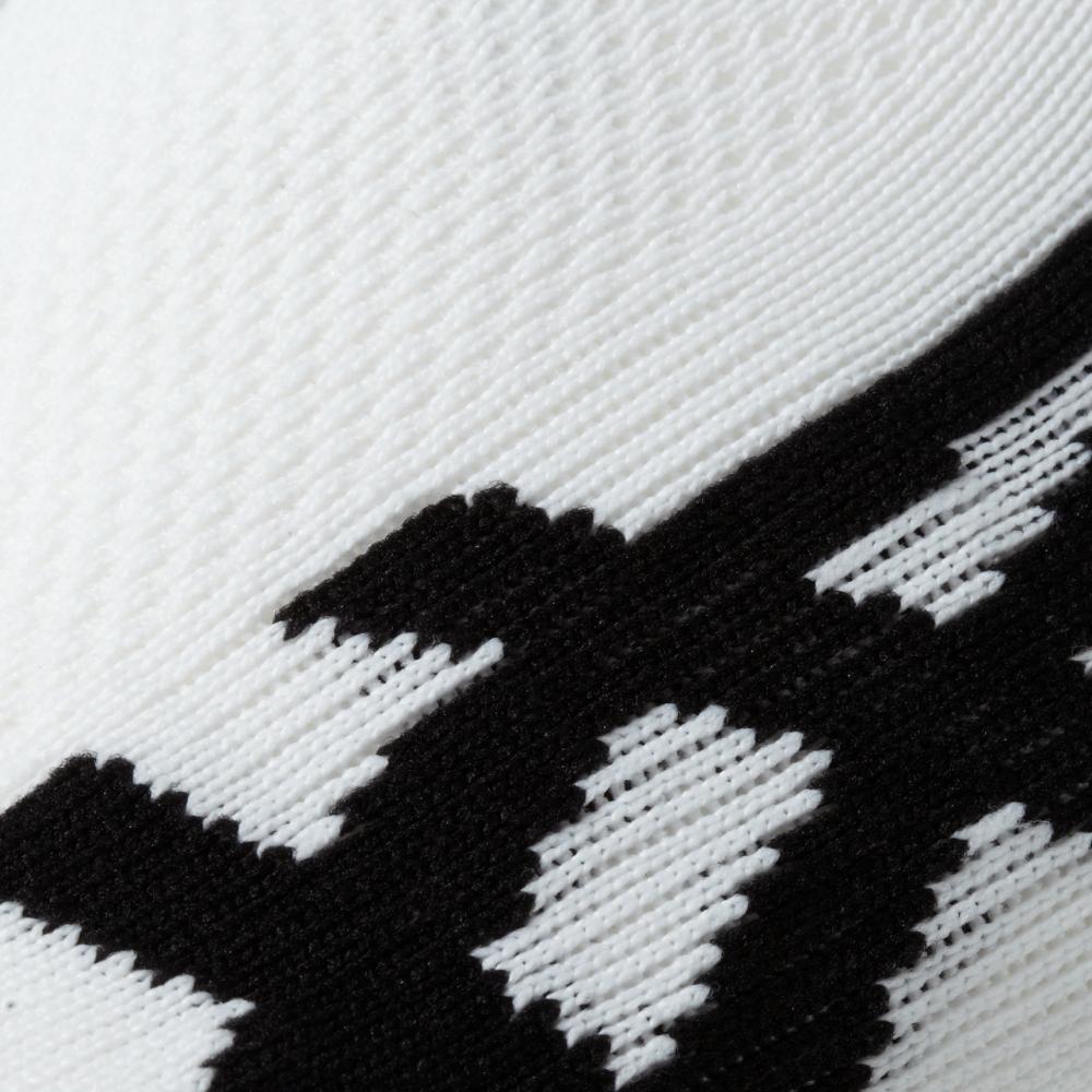 Мужские беговые носки Asics 2PPK GT1000 Series Ankle Sock 2 пары (123438 0001) белые фото