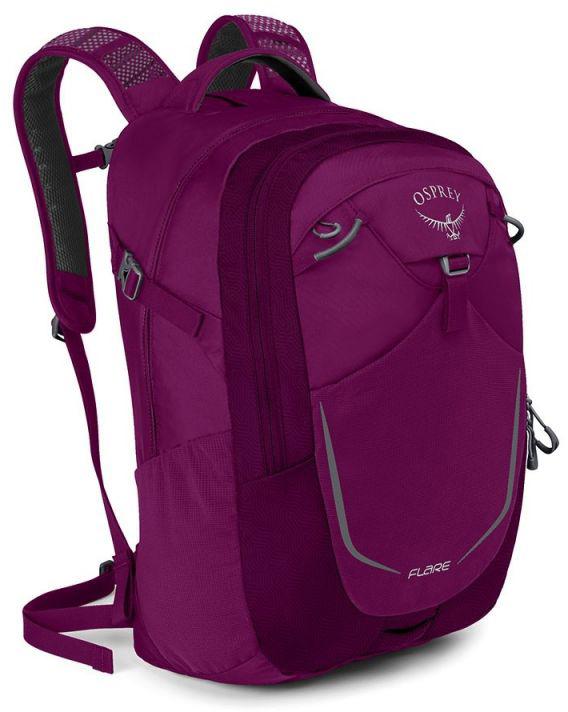 Городские рюкзаки Рюкзак городской Osprey Flare 22 Eggplant Purple osprey-flare-22-eggplant-purple.jpg