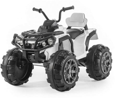 Гризли ATV 0906