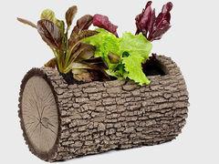 Горизонтальная цветочница Surreal  Дуб M (26х42 см) (Nature Innovation)