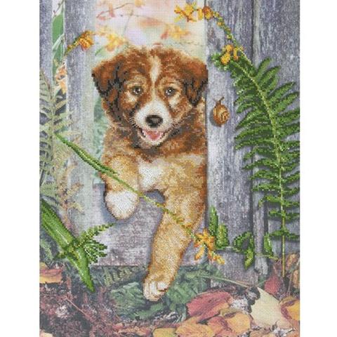 Название по-русски:Любопытный щенок¶Размер кадра, см:29x39¶Тип канвы, каунт:Аида 14¶Клеток на см: