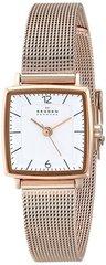 Наручные часы Skagen SKW2219