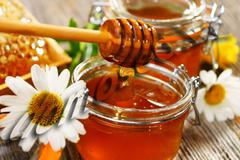 Мёд натуральный, горное разнотравье (Ведро) 1,2кг