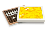 Davidoff Limited Editions Art Limited Edition 2017 Toro