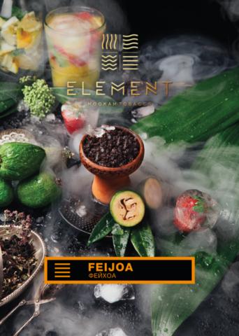 Element Feijoa (Фейхоа) земля 200г