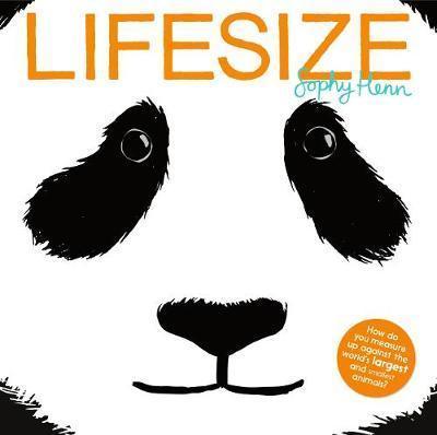 Kitab Lifesize   Sophy Henn